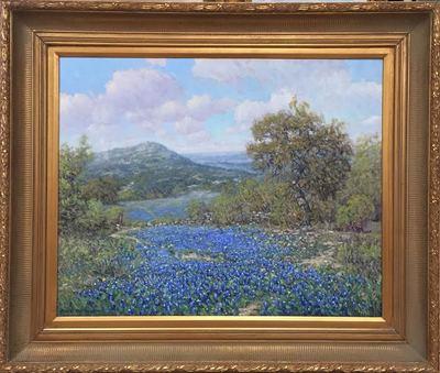 Texas_bluebonnet_2