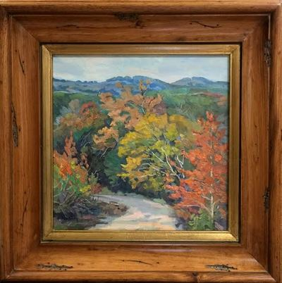 Fall_color_blanco_county_1