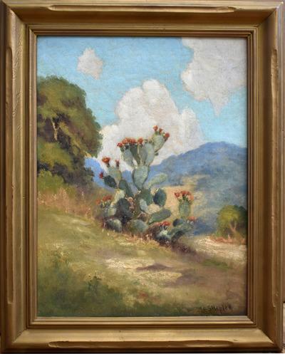 Cactusframed
