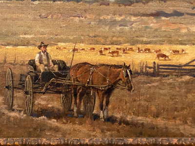 Fort_worth_cattle3