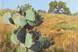 Cactuslandscape1