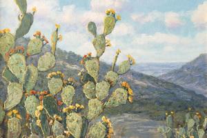 Cactuslarger1