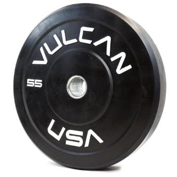55 lb Bumper Plate
