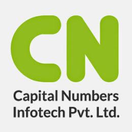 Capital Numbers Infotech Pvt Ltd