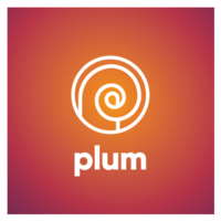 Plum Insights