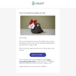 Vidyard's holiday video in an email