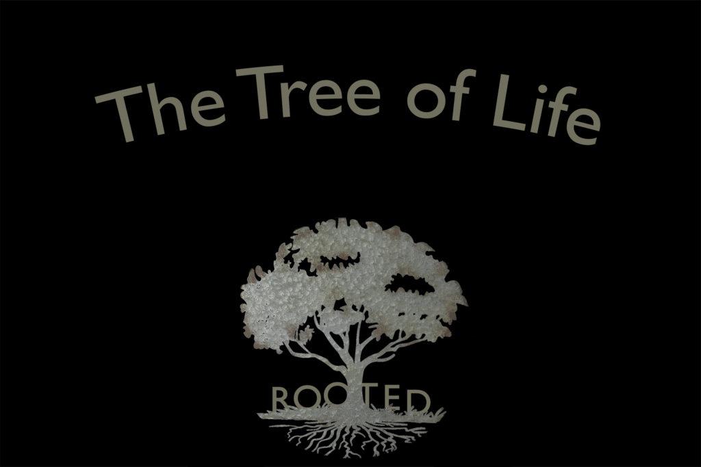 Tree of Life Website