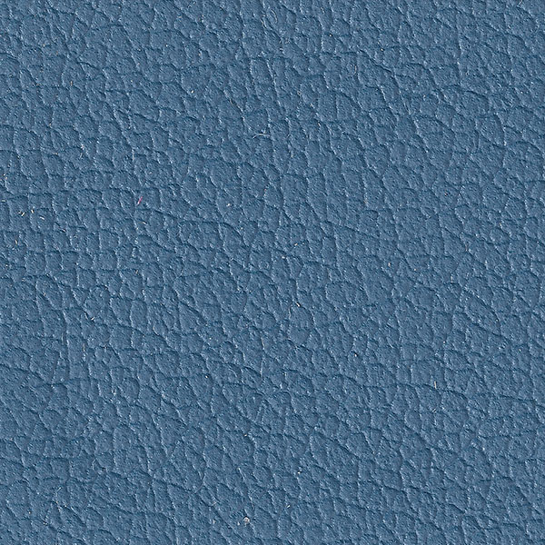 Blue Steel