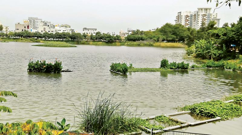 Artificial Islands: Reliable and a low-cost technology to revive lakes 1