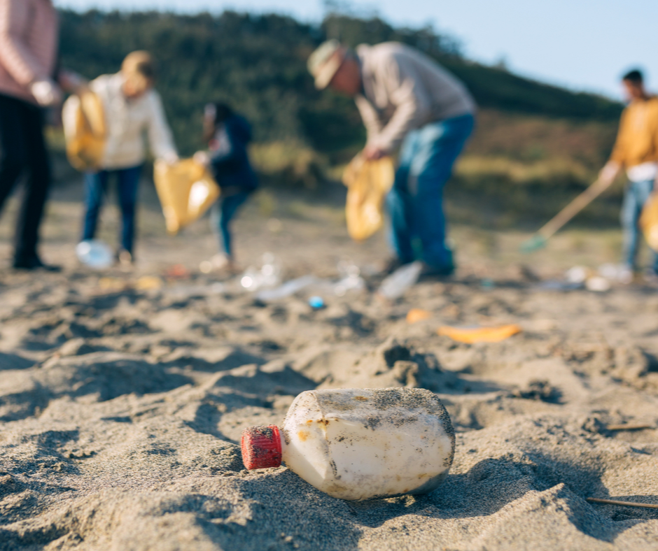 Water, Water Everywhere, Not a Drop to Drink: How 19,000 Volunteers Cleared up Debris across 12 Cities' Shorelines and Beaches 1