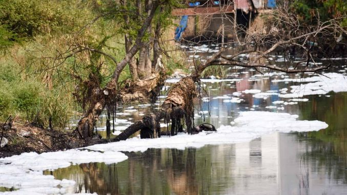 Dumping Medical Waste, Effluents into the Waters: 125 Karnataka Lakes in Critical Condition 2