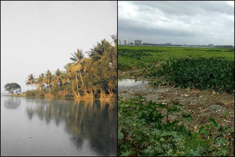 A Walk Down the Memory Lane Of Bellandur Lake 2