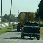 Cotton Convoy