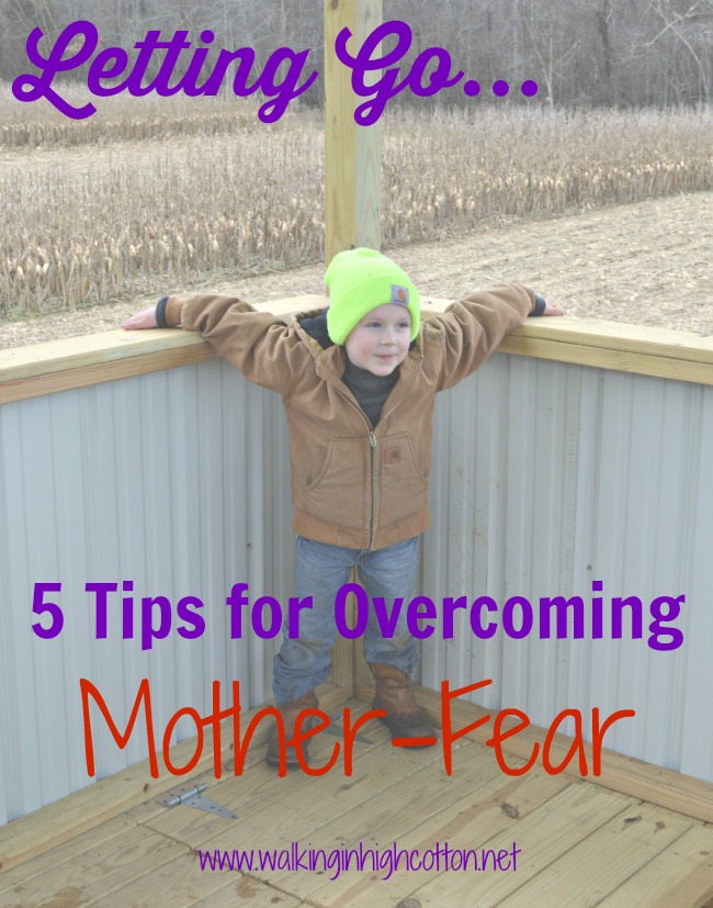 Letting Go...5 Tips for Overcoming Mother-Fear (via Walking in High Cotton)