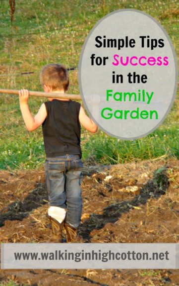 Simple DOs and DON'Ts to have a fun, successful season in the family garden. Learning, loving, enjoying fresh air and family time together. via Walking in High Cotton