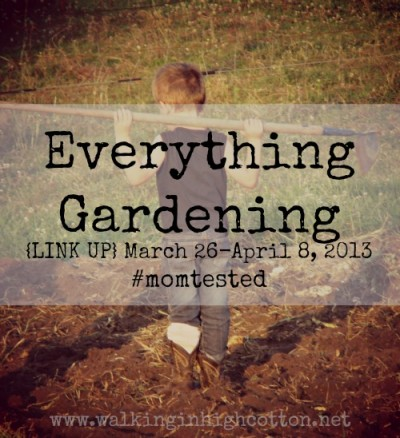 Everything Gardening {LINK UP} @ Walking in HIgh Cotton {www.walkinginhighcotton.net}