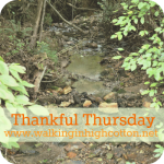 Rainy Days…Thankful Thursdays #4