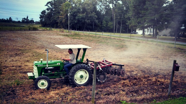 spreading fall grass seed 6