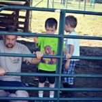 Fixing Fences…and Other Daily Adventures