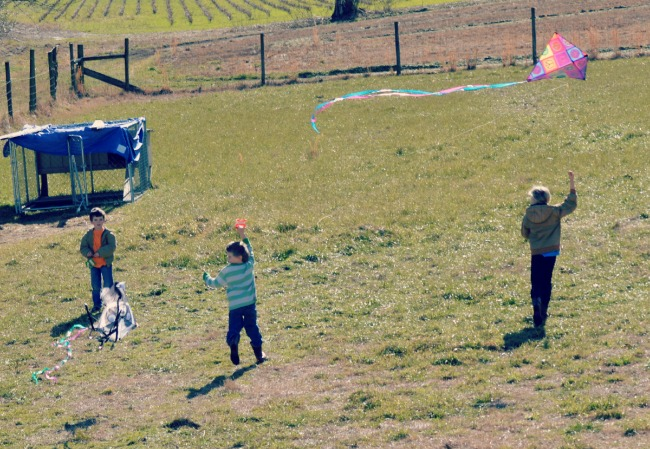We flew kites with our weekend company and the kiddos are still hooked. The weather on Monday was perfect!