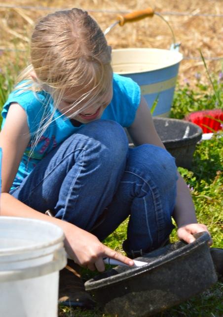 spring chores 12
