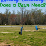 What Kind of Spring Cleaning Does a Farm Need?…the Daily Farm Adventures {46}