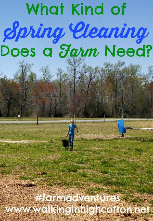What kinds of spring cleaning does a farm or homestead need? via Walking in High Cotton