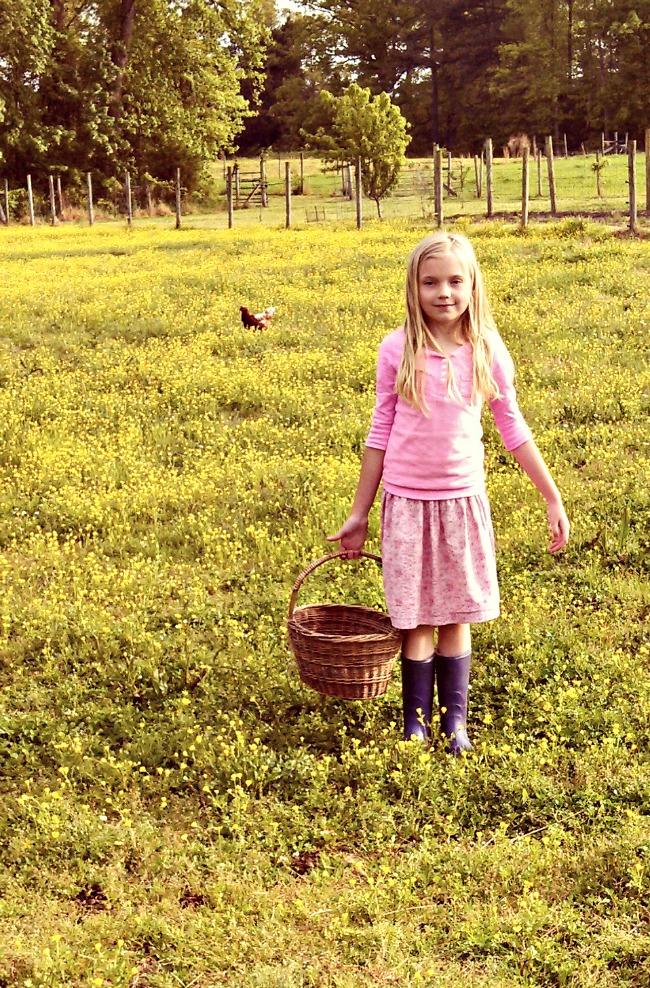 farmgirl 2
