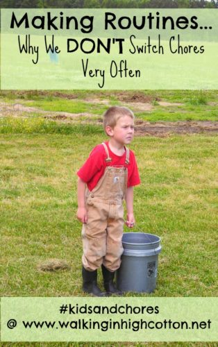 Making Chore Routines...and Why We Don't Switch Chores Very Often #kidsandchores {via www.walkinginhighcotton.net} With examples of how to make your own chore routines