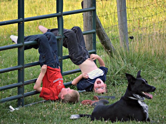 boys on gate 1