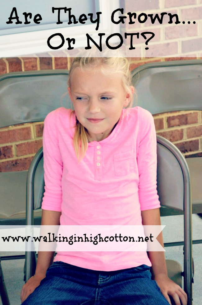 Are They Grown or Not? Thoughts on balancing privileges and responsibilities. via Walking in High Cotton