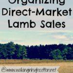 Organizing Direct-Market Lamb Sales…the Daily Farm Adventures {72}