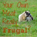 Is Raising Your Own Meat Really Frugal?