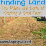 10 Thoughts on Finding Land…The Dollars and Cents of Starting a Small Farm