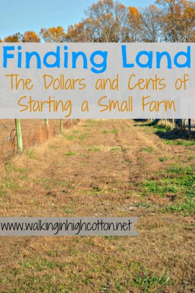 Finding Land...the Dollars and Cents of Starting a Small Farm {via www.walkinginhighcotton.net} How to think through your choices and creative ways to reduce or recoup costs.