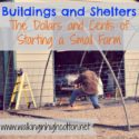 Buildings and Shelters...the Dollars and Cents of Starting a Small Farm {via Walking in High Cotton}