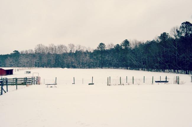 snow in 2015 2