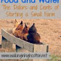 Figuring Out Food and Water...the Dollars and Cents of Starting a Small Farm {via Walking in High Cotton}