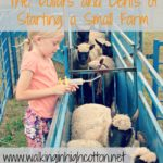 Understanding Health and Wellness (with Printable!)…the Dollars and Cents of Starting a Small Farm