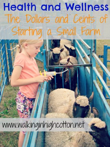 Understanding Health and Wellness on the Small Farm {part 4 of the Dollars and Cents of Starting a Small Farm series) via Walking in High Cotton
