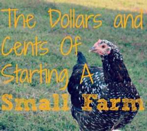 The Dollars and Cents of Starting a Small Farm Series at Walking in High Cotton