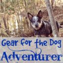 Gear for the Dog Adventurer -- via Walking in High Cotton