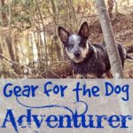 Have Dog, Will Travel…Gear for the Dog Adventurer