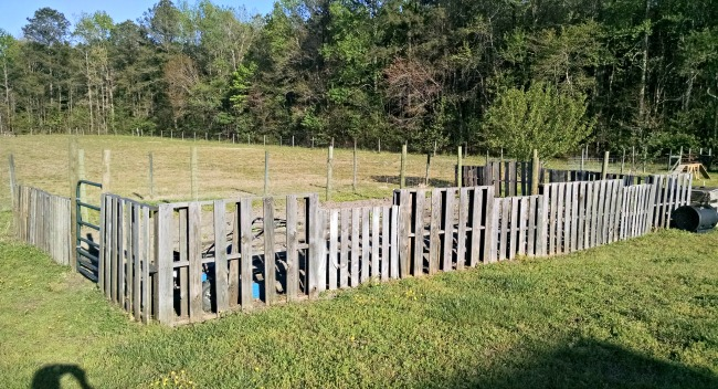 pallet fence 01