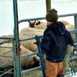 First Snow of the Year…the Daily Farm Adventures {116}