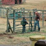 Farm Work Odds and Ends…the Daily Farm Adventures {119}