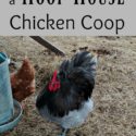Pros and Cons of a Hoop House Style Chicken Coop via Walking in High Cotton