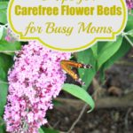 8 Tips for Carefree Flower Beds for Busy Moms
