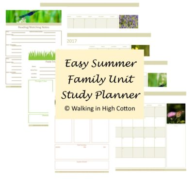 FREE Summer Unit Study Planner set at Walking in High Cotton (2017)