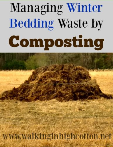 Managing your winter bedding by composting on the farm. Great for sanitation and soil enrichment! via Walking in High Cotton